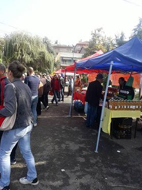 Изложба на мед и пчелни производи во Кочани