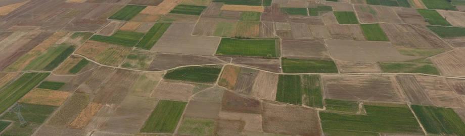 Нов рок за легализација на бесправно подигнати оранжерии, помошни објекти и објекти за примарна обработка на земјоделско земјиште